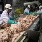 Trump orders U.S. meat-processing plants to stay open despite coronavirus fears