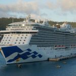 Two cruise workers on Princess, Carnival ships dead in separate incidents unrelated to COVID-19