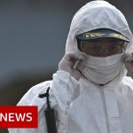 Coronavirus: China expels reporters for article it deemed racist – BBC News