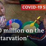 Coronavirus in Africa: Is the fallout worse than the disease?   COVID-19 Special