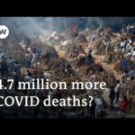 India's COVID deaths up to ten times higher than official tally | DW News