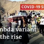 More than one million dead in Latin America as variants spread | COVID-19 Special
